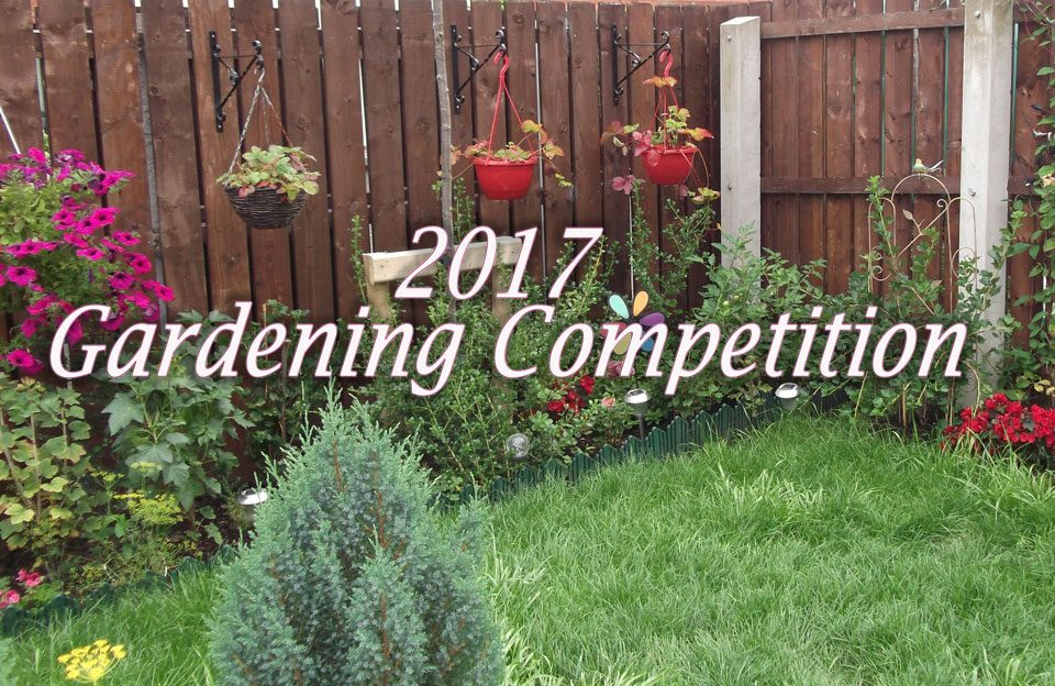 Apex Gardening Competition 2017