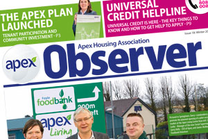 View the Apex Observer