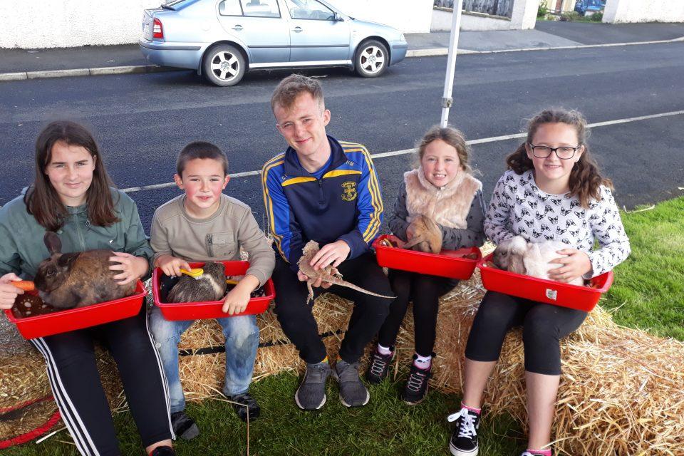 Housing Association Integration Project activities in Ard Chlochar, Carndonagh