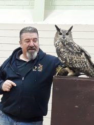 Mike Gibbs, World of Owls, entertaining the crowd.