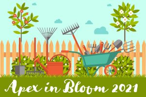 Apex in Bloom 2021 - Our annual gardening competition for Apex tenants