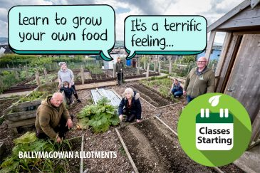 Apex gardening classes to start at Ballymagowan Allotments